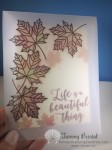 Tammy's Stamping Creations Stampin' Up! Colorful Seasons